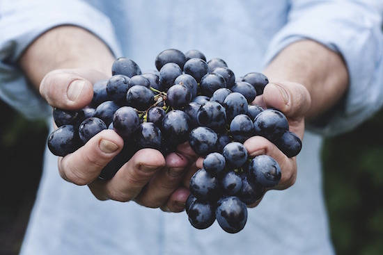 grapes-hand