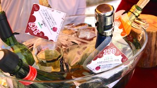 クラフトワインホリデイレポート!大阪城公園で全国のワインが飲める