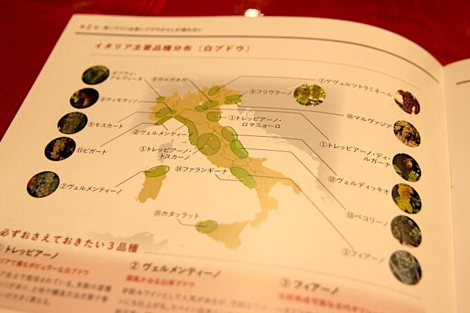 イタリアの主要ぶどう品種
