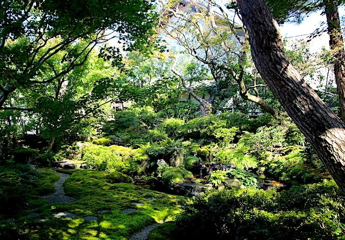 桜井甘精堂・泉石亭の日本庭園