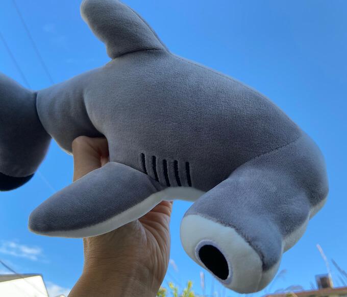 シュモクザメのぬいぐるみ