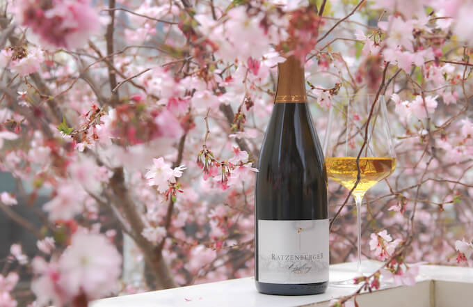 ラッツェンベルガーと桜
